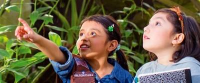 USA Girl Scouts Overseas | USAGSO