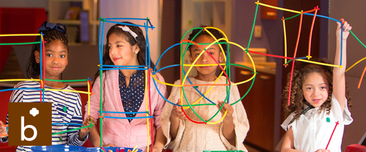 What Brownies Do